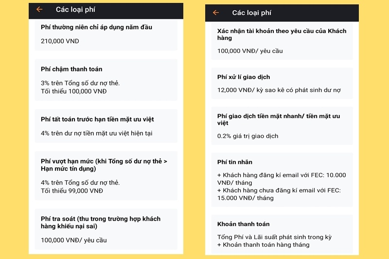 Một số loại phí dịch vụ mà bạn phải thanh toán khi vay tiền tại Moneytap